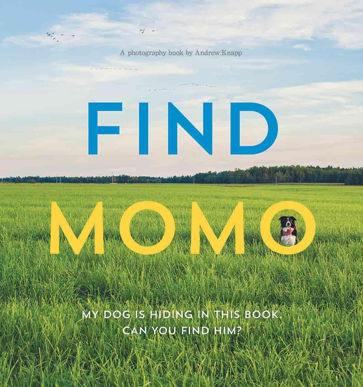 Cão Bordie Collie, Momo, encontra o Momo no livro
