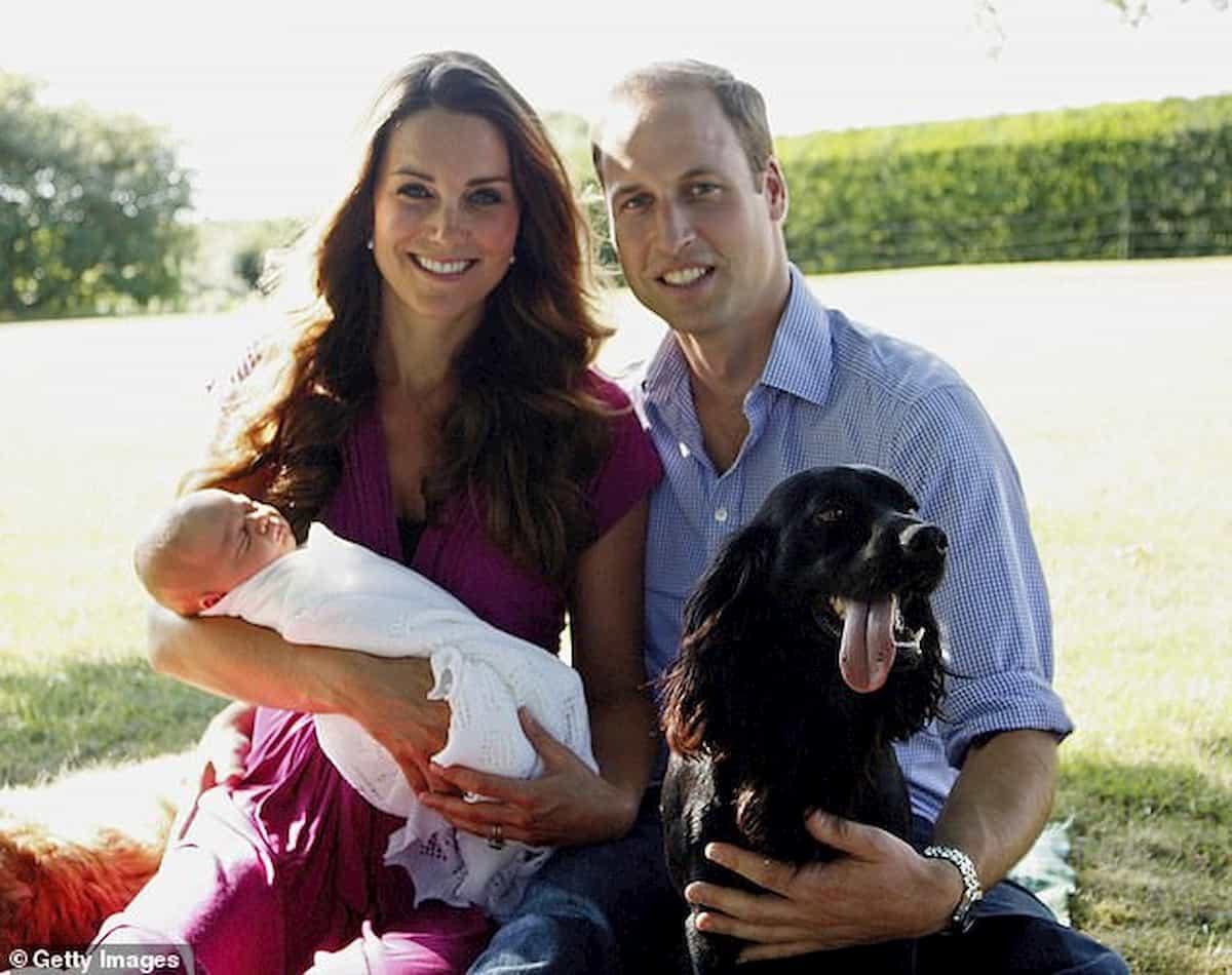 cão lupo cocker spaniel inglês com príncipes e george