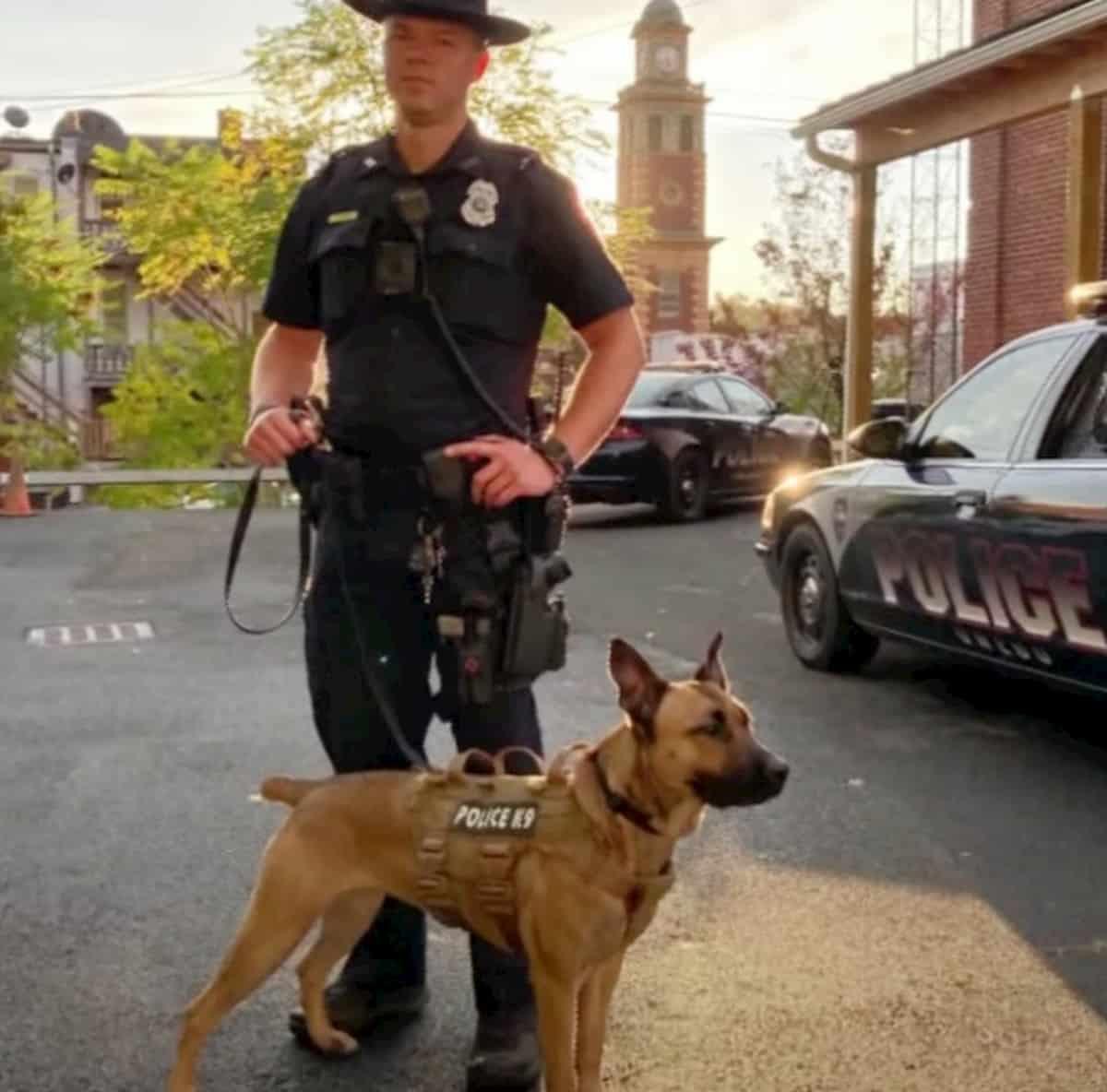 cadela maggie com o seu parceiro da polícia