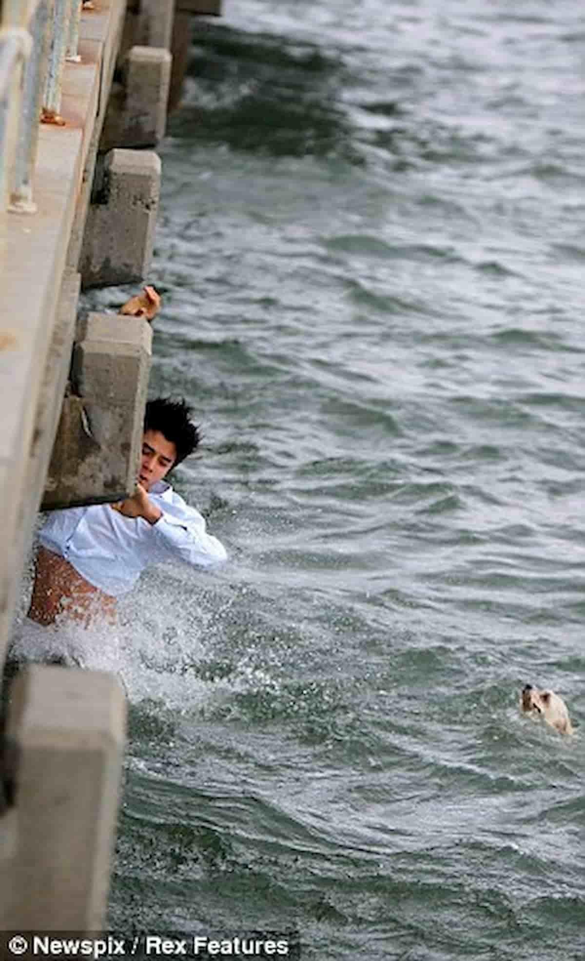 rapaz salva vida de cachorro Shih-Tzu que se afogava em alto mar